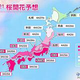 2021年桜開花予想 開花トップ福岡など13日 満開トップは東京22日