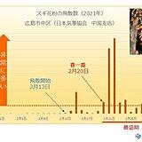 中国地方 スギ花粉の飛散は今が最盛期 今月中旬には減少傾向に
