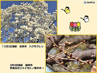 九州 植物を育てる春の雨 週末にかけてぐずついた天気