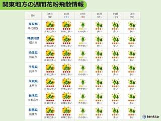 関東 あすはスギ花粉が大量飛散 昼前後と日没前後は万全の対策を
