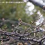 東京都心 9日ぶりに気温10℃に届かず 日中も冷たい雨