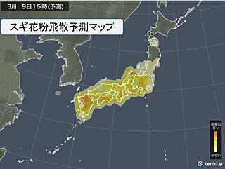 花粉 雨上がりのあす注意 水曜から東海・関東で連日のように非常に多い