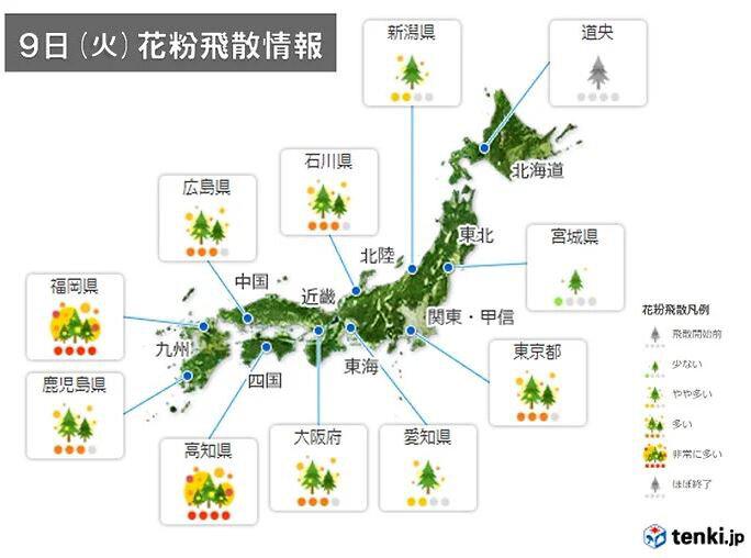 9日(火) 花粉飛散情報 九州や四国を中心に「非常に多い」所も