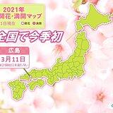 広島で今年全国トップで桜開花 広島からの桜前線スタートは統計開始以来初