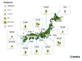 12日(金) 花粉飛散情報 西日本は雨で落ち着く 東日本は多いところも