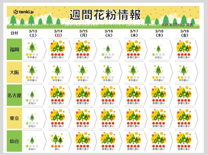 スギ花粉に加え 都内などヒノキ花粉の飛散始まる 日曜以降は大量飛散注意