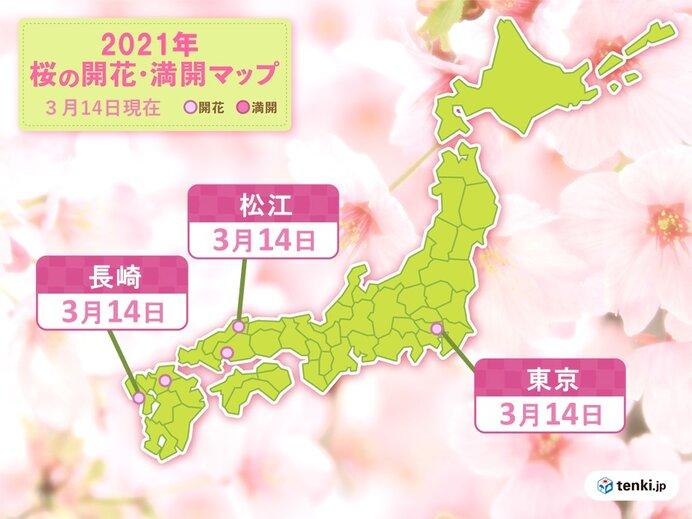 東京に続き 長崎や松江でも桜が開花 またも統計開始以来、最も早い開花