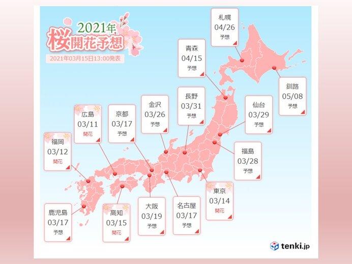 下旬には北陸や東北南部も桜開花へ