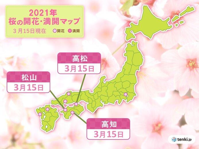 四国で続々と桜開花