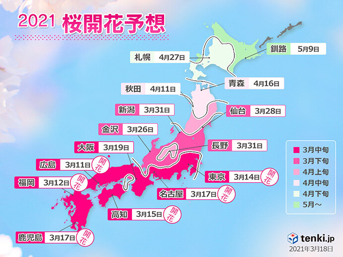 2021年桜開花予想 週明け満開ラッシュ 東京22日 福岡・広島23日