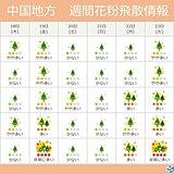 中国地方 ヒノキ花粉の飛散最盛期へ