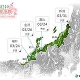 北陸 桜前線 記録的な速さで北上中 来週中ごろから開花ラッシュか