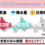 北海道の1か月予報と桜開花予想 高めの気温が続き、桜の生長も進む
