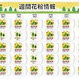 花粉 「非常に多い」レベル 西日本はヒノキがピーク