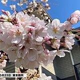 関東 東京など4日ぶりの青空 桜と見事なコントラスト