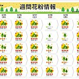 25日も東・北日本はスギ花粉が「非常に多い」 西日本はヒノキがピーク