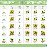 中国地方 ヒノキ花粉飛散の最盛期到来