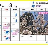 カレンダーで振り返る 東京の桜と週末の雨