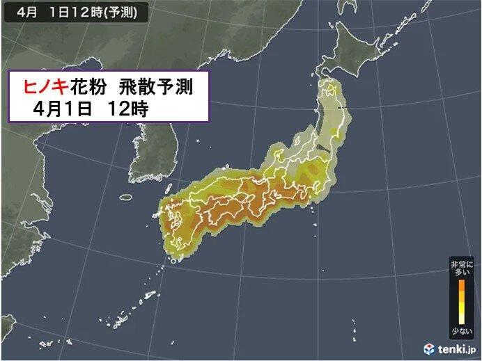 九州から関東 ヒノキ花粉 大量飛散
