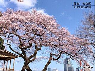 東北 新生活を後押しする青空と暖かさ いつまで?