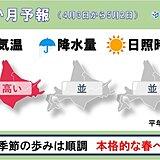 北海道の1か月予報と桜開花予想 いよいよ北海道にも桜の便り!