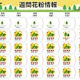 週末にかけても 四国から東北では花粉飛散が「非常に多い」 万全の対策が必要