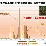 中国地方 ヒノキ花粉の飛散は終盤を迎えたか