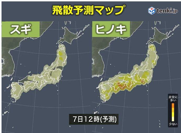 あす7日(水)四国・近畿・東海はヒノキが大量に 東北はスギ花粉に注意
