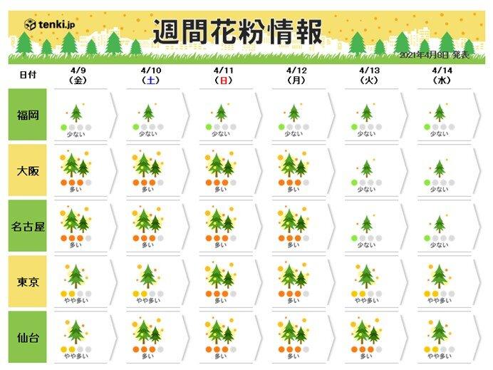 花粉シーズン終盤に 晴れて暖かい日など「多い」予想