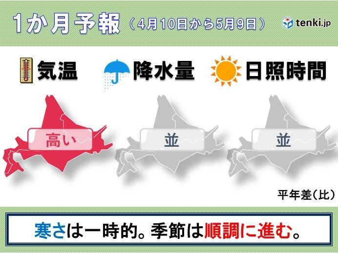 北海道の1か月予報 桜前線上陸!北海道は春本番へ。
