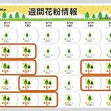最新の花粉情報 2021年対策はいつまで ヒノキも西からピーク終了だが 多い所も