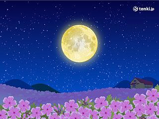 4月の満月「ピンクムーン」を眺めよう! 今夜は広く観測のチャンスあり