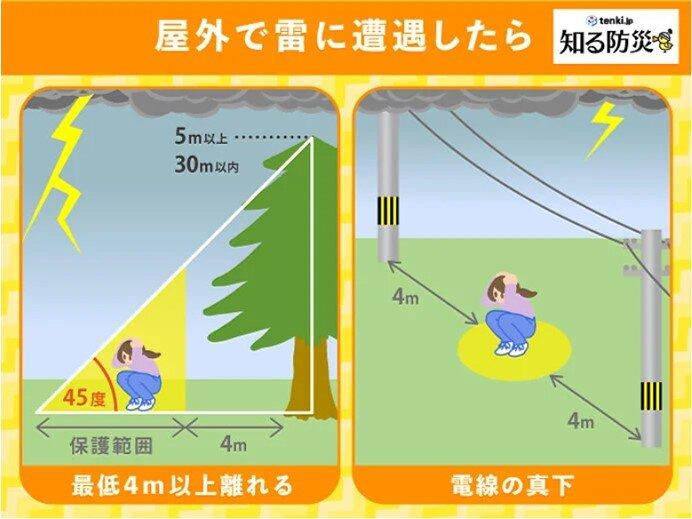 軒下や高い木の下は危険