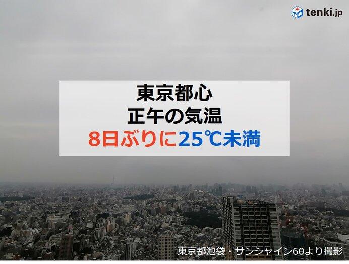 梅雨入りした東京 正午の気温 8日ぶりに25℃未満 ただ湿度が高くムシムシ