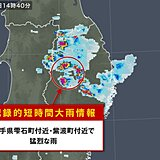 岩手県雫石町付近・紫波町付近で猛烈な雨 「記録的短時間大雨情報」