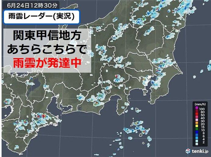 24日の関東甲信 雨雲発達中 午後は激しい雨や雷雨の所も 低い土地の浸水など注意
