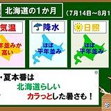 北海道の1か月 北海道らしい夏の暑さに!