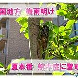 四国やっと梅雨明け 香川県で初の熱中症警戒アラートも この先暑さに警戒を