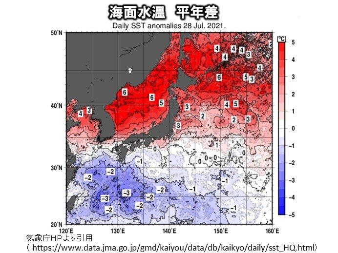 北海道周辺や日本海の海面水温 平年より高い