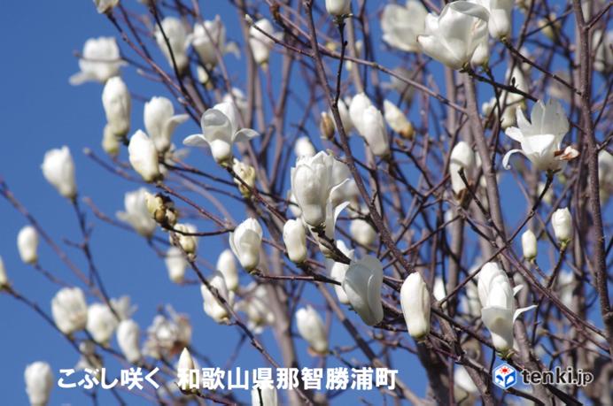 春実感ウィーク 近畿地方