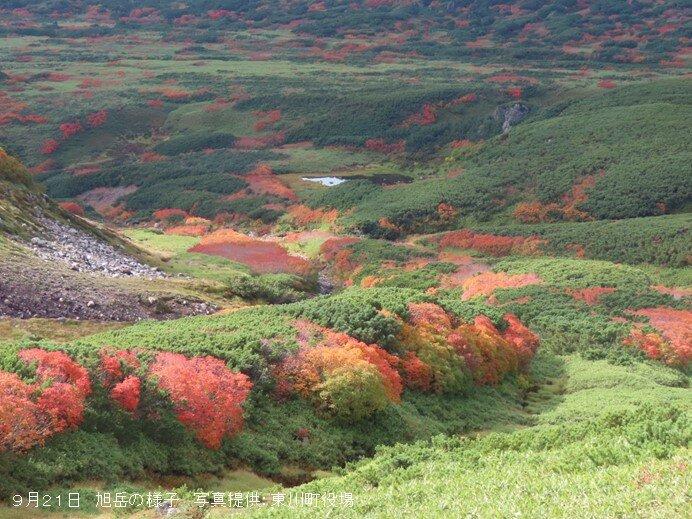 北海道 大雪山系旭岳では紅葉の季節に