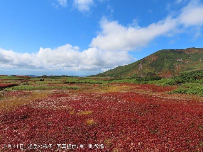 北海道の旭岳では紅葉の季節 本州でも冷える朝も 奥日光では今朝8℃まで下がる