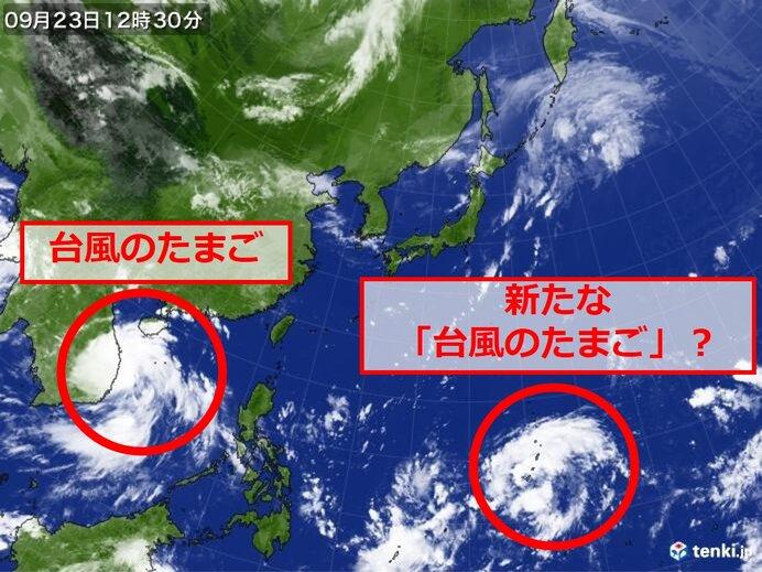 台風のたまご 次々に発生か