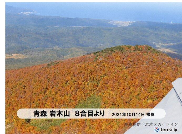 東北 土日の雨で季節が前進 山は雪と紅葉の共演も