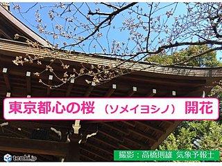 東京 ソメイヨシノ開花