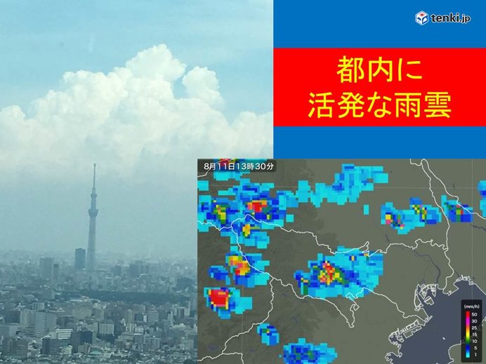 都内に活発な雨雲 夜にかけて注意
