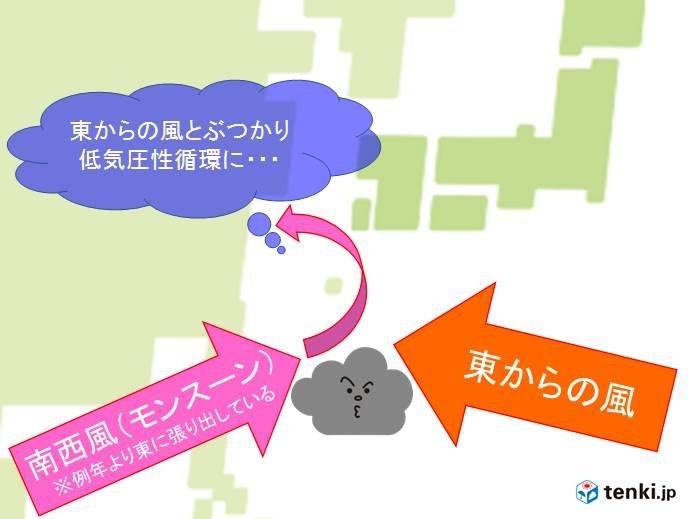 台風のエネルギー源は海面水温、日本付近の様子は?