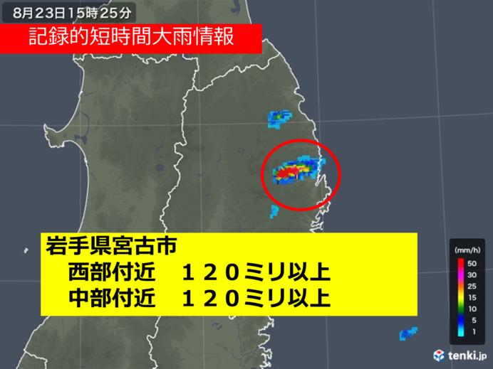 岩手県で記録的短時間大雨情報
