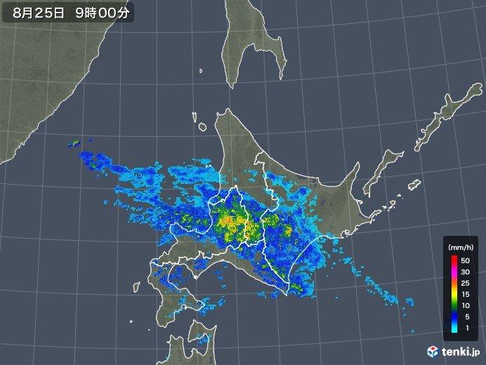 北海道 元台風の雨雲で土砂降りに