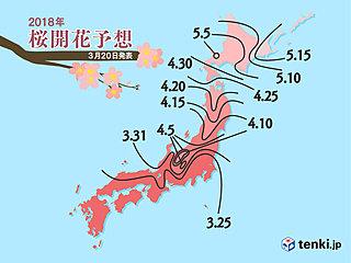 桜満開はいつ? 日本気象協会発表